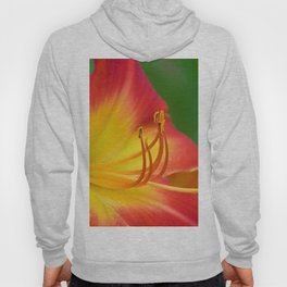 Ruby Spider Day Lily Hoody