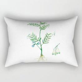 Lentil Rectangular Pillow