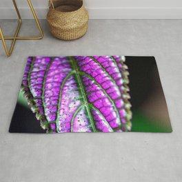 Jurassic Purple Rug