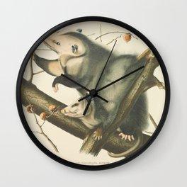 Vintage Illustration of Mother and Baby Possum - John James Audubon - 1840 Wall Clock