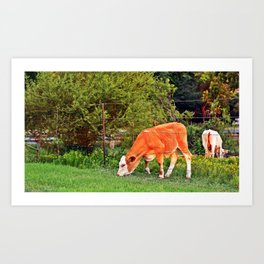 The Grass Is Greener on the Other Side Art Print
