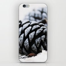 Frozen in Time iPhone & iPod Skin