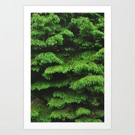 Greenery I Art Print