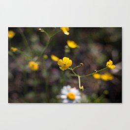 Yellow Summer Flowers Grain Look Canvas Print