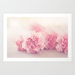 Pale Pink Carnations 4 Art Print