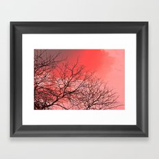 Branches in the Red Sky Framed Art Print