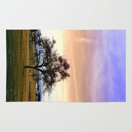 Old tree and amazing cloudy sky | landscape photography Rug