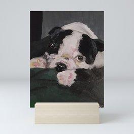 Koda Mini Art Print