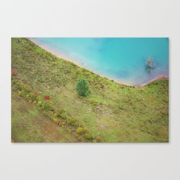 Flock of birds under the helicopter Canvas Print