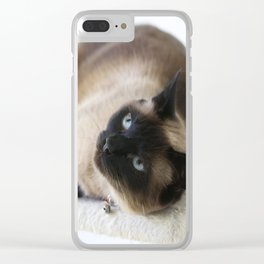Sulley, A Siamese Cat Clear iPhone Case