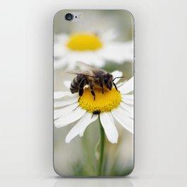 Biene auf der Kamille Wiese iPhone Skin