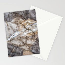 Petrified wood 3266 Stationery Cards