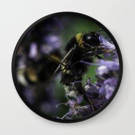 Bumblebee on Lamiaceae agastache II Wall Clock