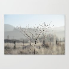 Out Standing  Canvas Print