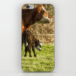 Mother Cow and Calf iPhone Skin