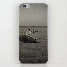 stranded iPhone & iPod Skin