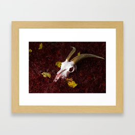 Red Grass Framed Art Print