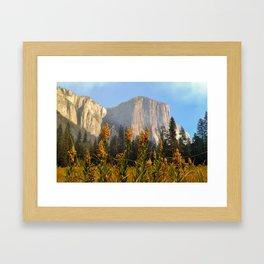 Fall at El Capitan Framed Art Print