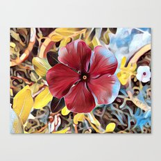 5 Petal Flower Canvas Print