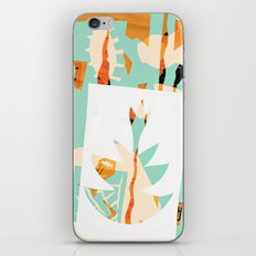 !~º iPhone & iPod Skin