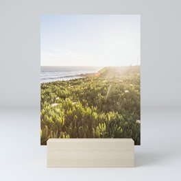 Summer sunset in Santa Cruz Mini Art Print