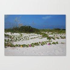 Railroad Vines on Boca I Canvas Print
