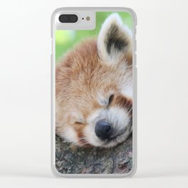 Red_Panda_20150705_by_JAMFoto Clear iPhone Case