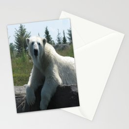 You Lookin' At Me Stationery Cards
