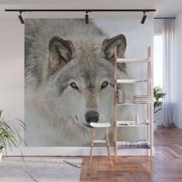 Winter Timber Wolf Wall Mural