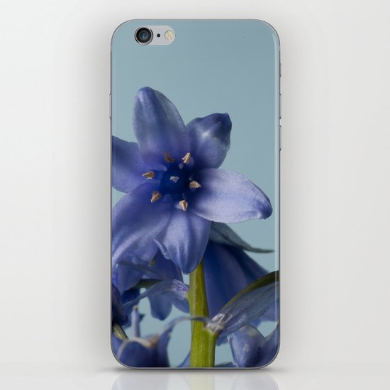 Bluebell Close Up iPhone & iPod Skin