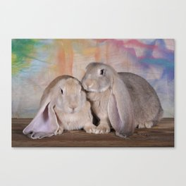 Spring Bunnies Canvas Print