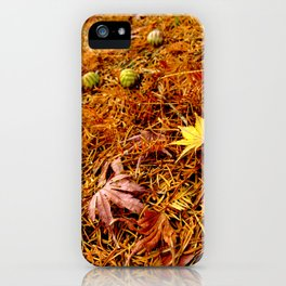 Colorful Japanese Maple Leaves and Acorns on the Ground In Fall Photography iPhone Case