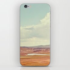 Summer Landscape iPhone & iPod Skin