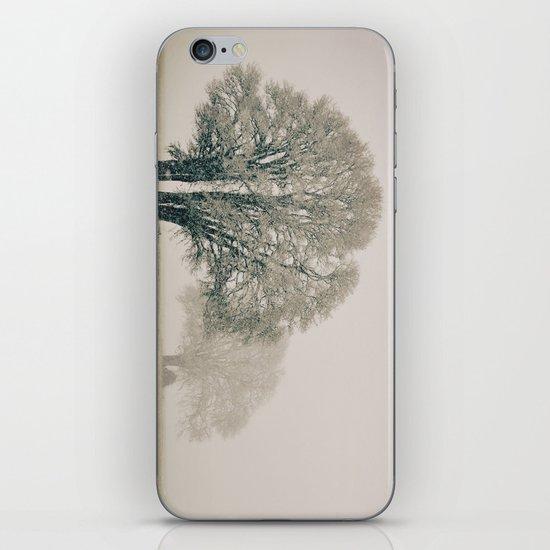 Enduring Winter iPhone & iPod Skin