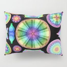 Ernst Hackel Diatomea Diatoms Pillow Sham