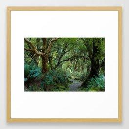Primeval forest on Kepler Track Framed Art Print