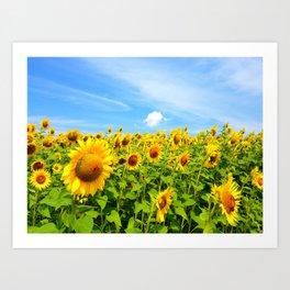 Sun Eating Flowers Art Print
