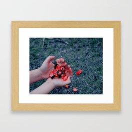 Red Remains Framed Art Print