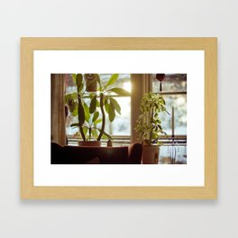 Morning Winter. Framed Art Print