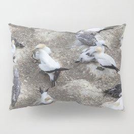 Gannet Colony Pillow Sham