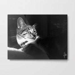 Leela Lean Metal Print