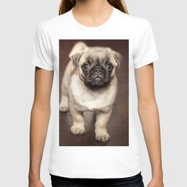 Baby Frank T-shirt