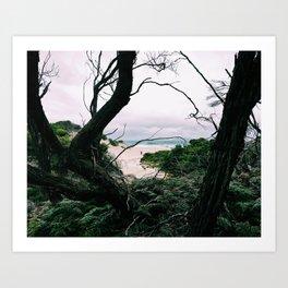 Ocean View, Squeaky Beach, Victoria, Australia Art Print