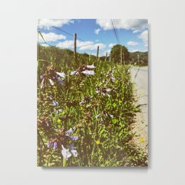 Roadside Flowers • Appalachian Trail Metal Print