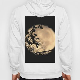 Crepe Myrtles and Moonlight Hoody