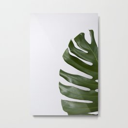 Palm on White Metal Print