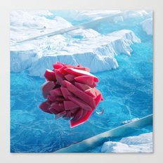 Arctic Gems Canvas Print