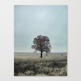 Still Alone Canvas Print