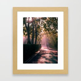 Cambridge Morning Framed Art Print