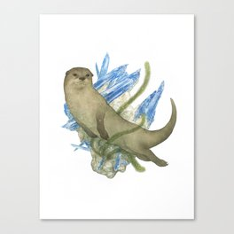 River Otter and Kyanite Canvas Print